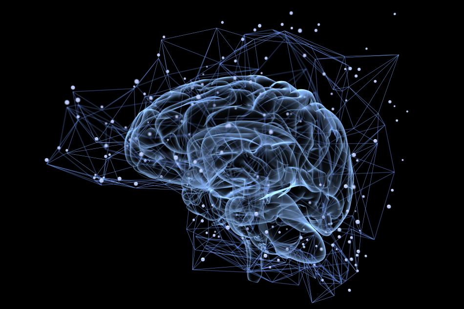 Neurociencies